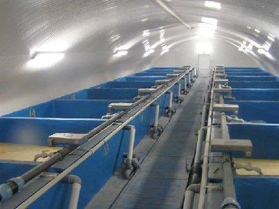 Узв для выращивания рыбы схема оборудования своими 434