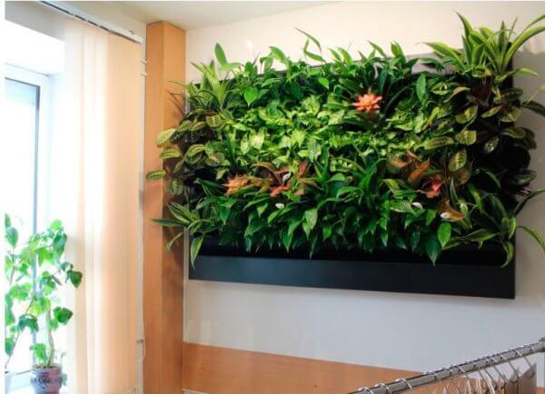 Вертикальное озеленение - бизнес без конкуренции