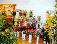 Бизнес план цветочного магазина