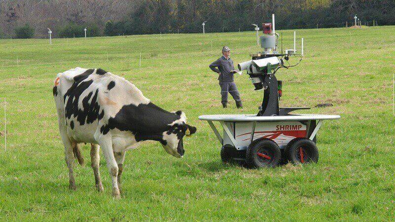 вольный выпас и роботизация