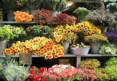 Бизнес план цветочного отдела бизнес идея для азс