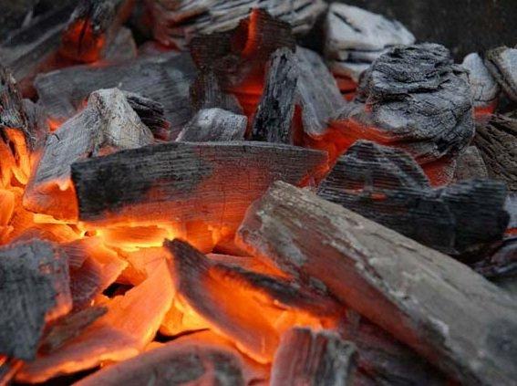 Бизнес на производстве древесного угля - рентабельность от 20%